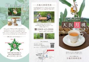 お茶リーフレットデザイン作成
